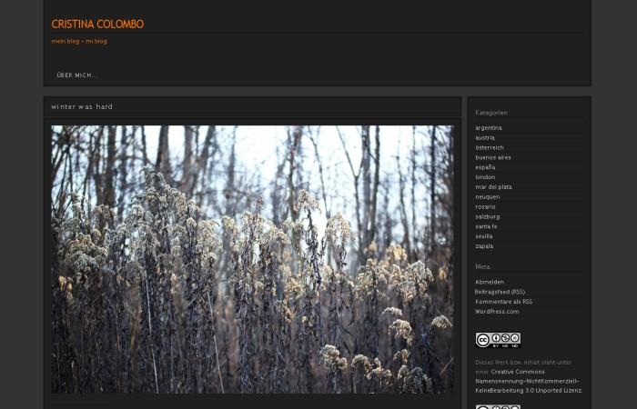 blog50-cristinacolombo